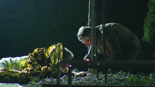 Man ligt ruim twee uur lang op granaat in Venlo