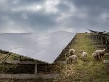 Zonnepark met groen tussen Echteld en Medel