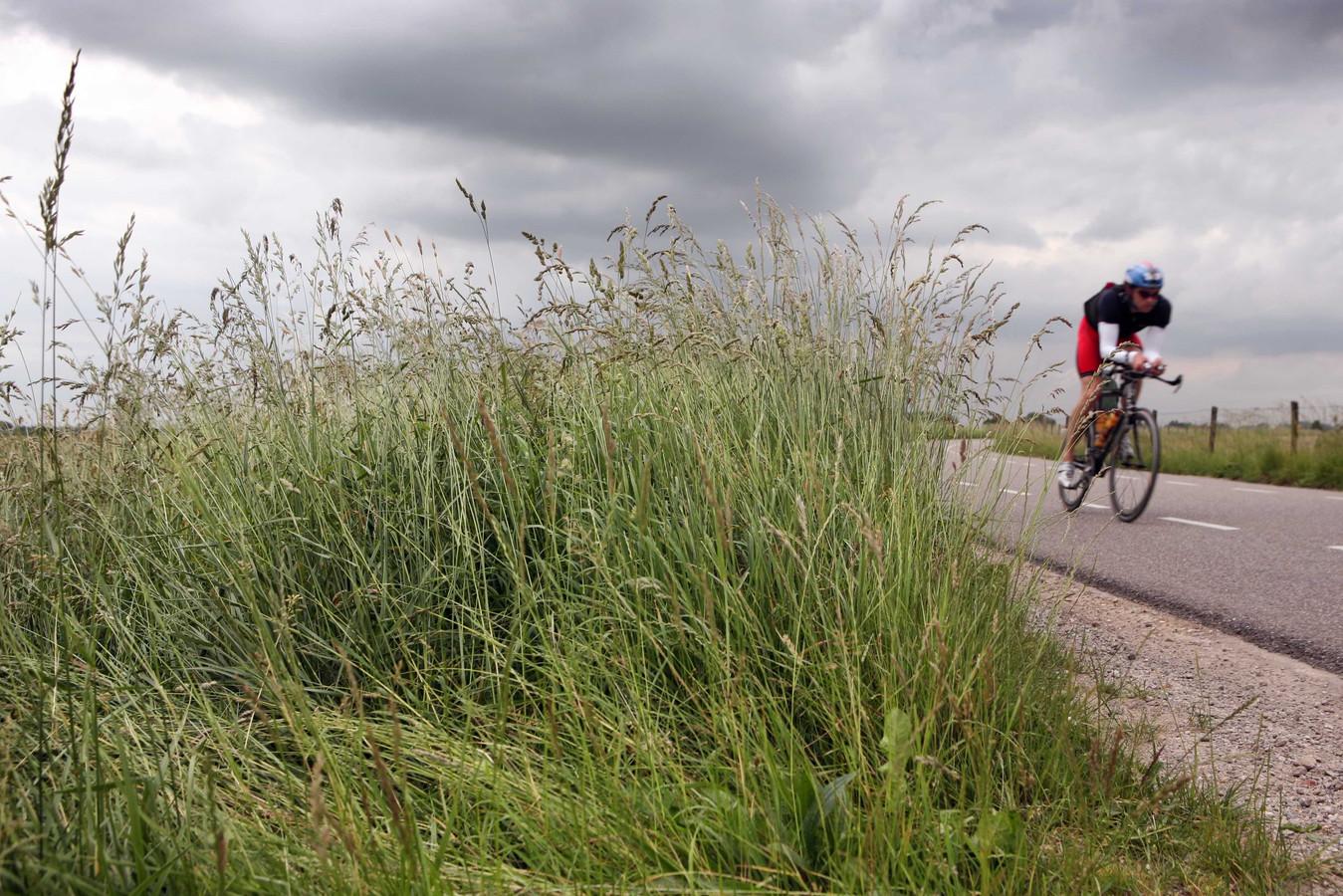 Fietsen op de dijk tussen Doornenburg en Angeren.