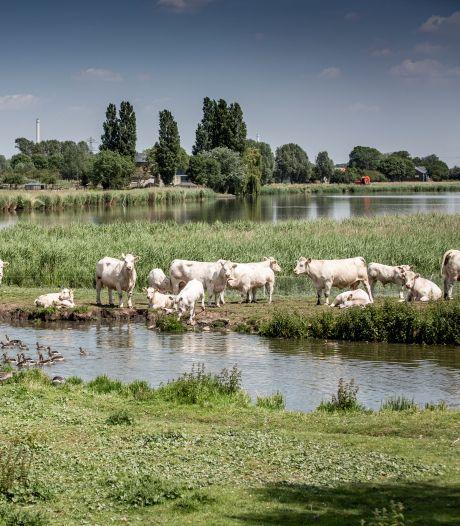 'Hoge waarde woningen zorgt voor oneerlijke verdeling waterschapsbelasting'
