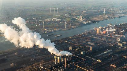 Gent krijgt dan toch biomassacentrale