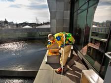 Van Abbemuseum vraagt op originele manier aandacht voor bedreigde bijen