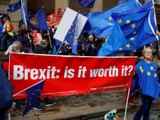 'Nederland is niet klaar voor harde brexit'