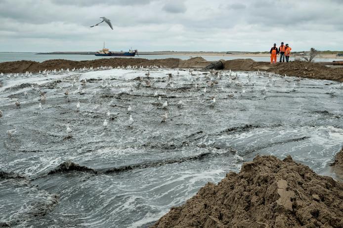zand suppletie op strand ellemeet, foto dirk-jan gjeltema