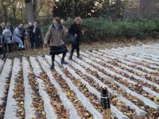 Verdwijnende trap: een kunstwerk dat overwoekerd moet raken