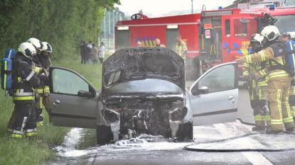 Kleine Peugeot vernield door brand: zes (!) inzittenden ongedeerd