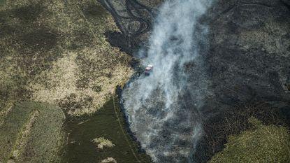 Brand op schietveld in Helchteren, rookhinder mogelijk