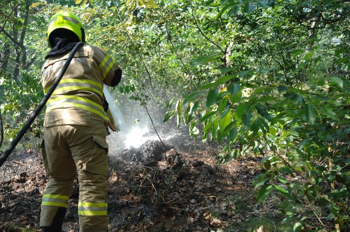 De brandweer blust het vuur