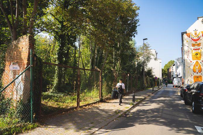 Het bosje in de Akkerstraat is gespaard.