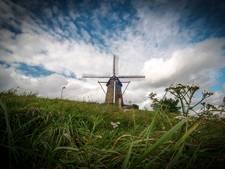 Unesco, Van Gogh... Brabant zet alle molenaars (behalve die van windturbines) in het zonnetje zetten