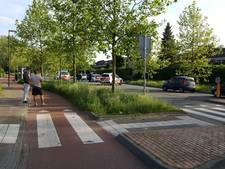 Politie trekt wapens bij aanhouding in Oosterhout