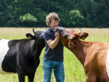 Lakenvelder boer Jelle uit Twekkelo: 'Koeien kun je niet uitzetten'