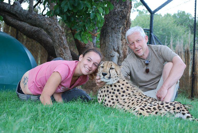 Kim en papa Georges Hiltrop met een van de jachtluipaarden die lang bij Kim in Zuid-Afrika heeft verbleven.
