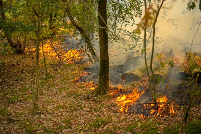 Het vuur in het bos in Gerwen
