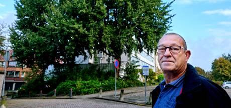 PRO Sliedrecht: 'Kunnen bomen bij oude ASz niet gewoon behouden blijven?'