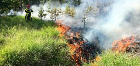 50 meldingen in halfuur tijd: Brabantse brandweer is razend druk met natuurbranden