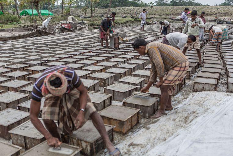 Honderden arbeiders maken cementen blokken om de dijk te versterken. Beeld Reza Shahriar Rahman