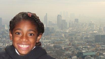 """""""Mijn dochtertje stierf door luchtvervuiling en ik kan het eindelijk bewijzen"""""""