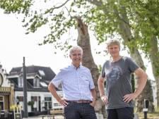 Zorg over de drie monumentale bomen van Diepenheim