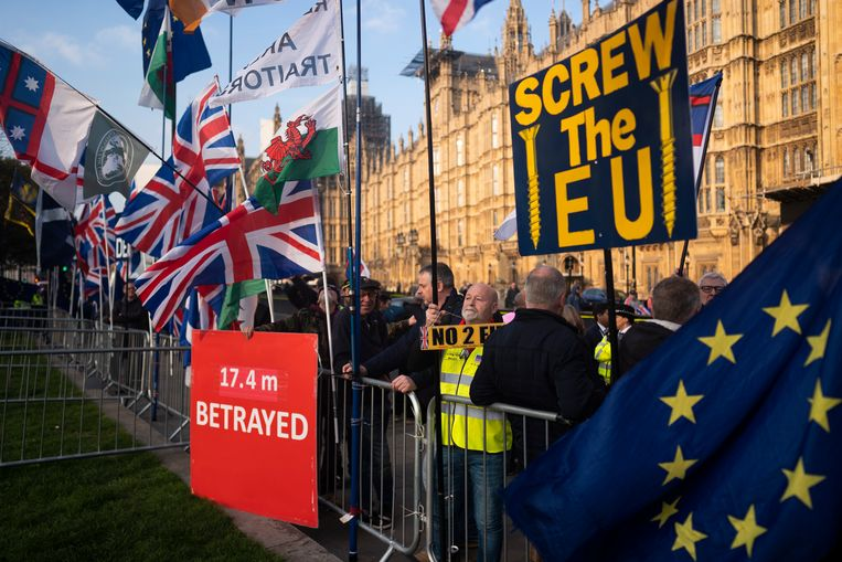 Demonstranten voor de brexit bij het parlementsgebouw in Londen.  Beeld EPA