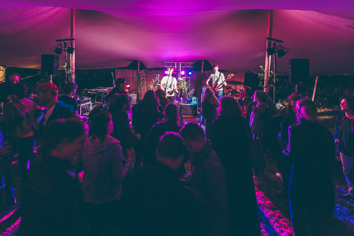 Muziekoptredens op BOOM IN' Putten in 2017