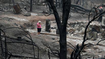 """VS-minister Binnenlandse Zaken over bosbranden Californië: """"Niet de schuld van klimaatverandering, wel van extreme milieuactivisten"""""""