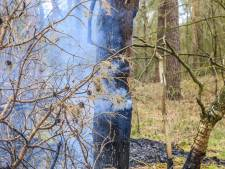 Brandweer blust beginnende bosbrand in De Mortel
