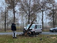 Busje raakt van de weg en rijdt boom uit de grond in Arnhem