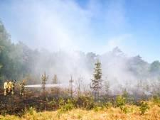 Hoog risico op natuurbranden in grote delen van Nederland