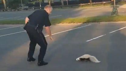 Stank voor dank: agent redt stinkdier, maar wordt besproeid