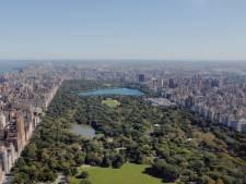 Central Park lance un chantier à 110 millions de dollars