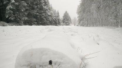 Tot 7 centimeter sneeuw op komst in Ardennen
