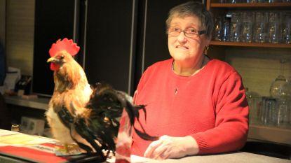 """Cafébazin Paulette (74) staat al halve eeuw 'In de Kiek': """"Het is te plezant om nu al te stoppen"""""""