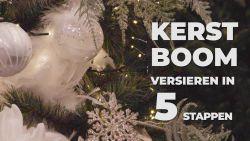 Zo zet je in 5 stappen je kerstboom op