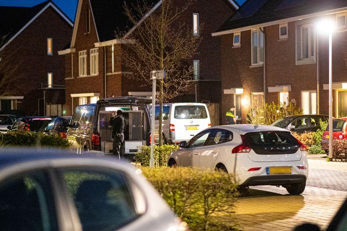 De politie doorzocht dinsdagavond een woning aan de Van Disselstraat in Stadshagen, Zwolle. Ook op vier andere plekken in de stad werden panden doorzocht.