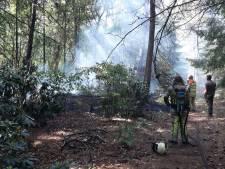 Bosbrand breekt uit tussen Amersfoort en Soest