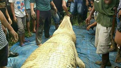 Menselijke resten aangetroffen in buik van zes meter lange krokodil