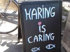 Haring is caring: wat is de slechtste slogan van het jaar?