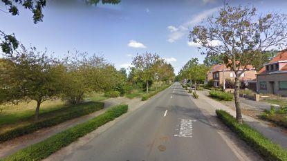 Tuinman gewond na aanrijding in Provincieweg