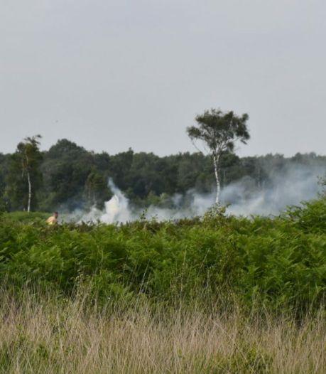 Vlammen gedoofd bij natuurbrand in Enschede; speciaal team speurt verder