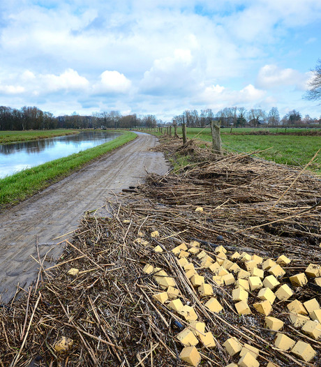 'Twentse' lekkernij: Dinkel vol met rivierkreeft