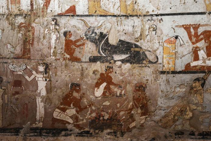 Haptet stond dicht bij het Egyptische koningshuis en was waarschijnlijk een priesteres