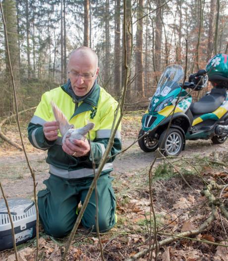 Primeur: Motor voor Dierenambulance tussen Nunspeet en Barneveld