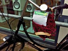 Heideplantje tegen wildstallen fietsen in Apeldoorn