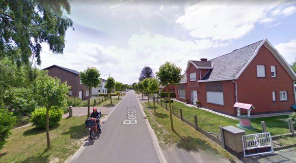 Illustratiebeeld: Bosstraat Laarne
