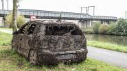 """""""Mosselen op opgeviste auto tonen dat Schelde niet dood is, maar je kan er toch best niet van proeven"""""""