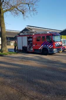 Man overlijdt na val in gierput in Borculo