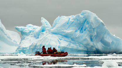 Overblijfselen van regenwoud ontdekt bij West-Antarctica