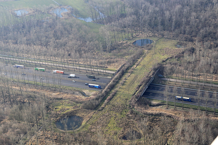 In de buurt van Best is wel een ecoduct over de A2 gebouwd.