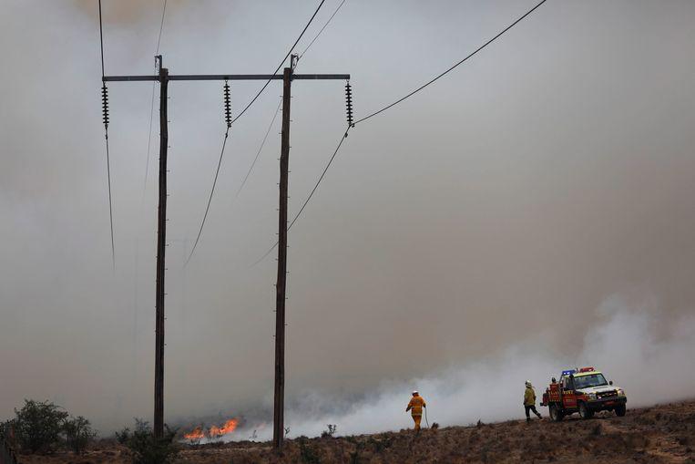 De brandweer in New South Wales, op 2 februari. Beeld EPA
